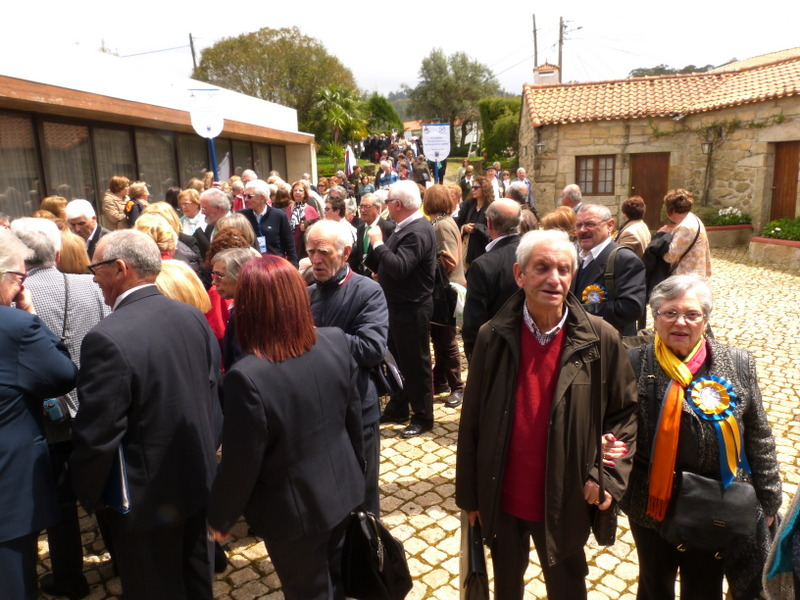 Participantes